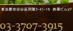 東京都世田谷区用賀2-41-16 鈴章ビル2F 03-3707-3915